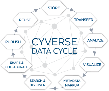 Data Cycle