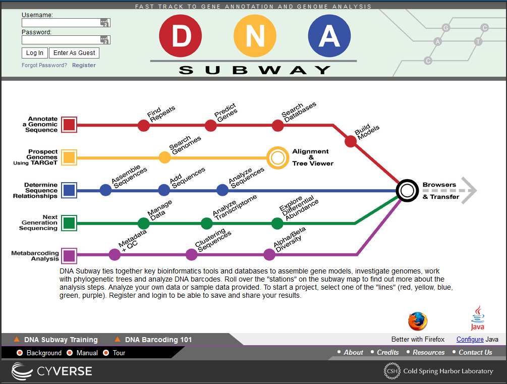 screen shot of DNA Subway